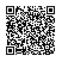 QR link for Death to the Avenger